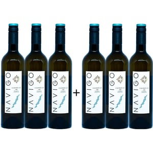 Vin alb sec Navigo Compas Pinot Grigio, 0.75L, 6 sticle