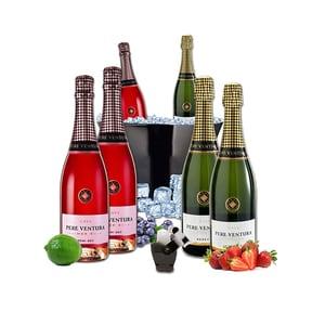 Vin spumant rose si alb Pere Ventura, 0.75L, 3 + 3 sticle + Frapiera + Stopper