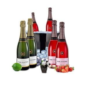 Vin spumant rose si alb  Pere Ventura, 0.75L, 4 + 2 sticle + Frapiera + Stopper