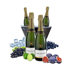 Vin spumant alb Pere Ventura, 0.75L, 4 sticle + Frapiera