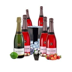 Vin spumant rose si alb Pere Ventura, 0.75L, 5 + 1 sticle + Frapiera + Stopper