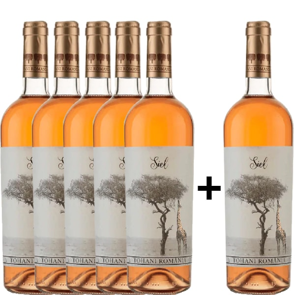 Vin rose sec Tohani Siel Rose, 0.75L, 5+1 sticle