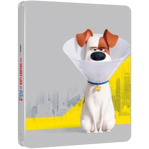 Singuri acasa 2 Steelbook 4K + Blu-ray