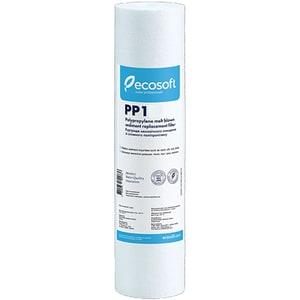 """Cartus ECOSOFT CPV25101ECOEXP, Polipropilena, 2.5 x 10"""""""