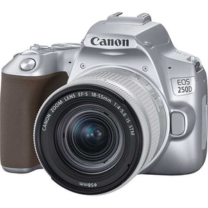 Aparat foto DSLR CANON EOS 250D, 24.1 MP, Wi-Fi, silver + Obiectiv EF-S 18-55mm IS