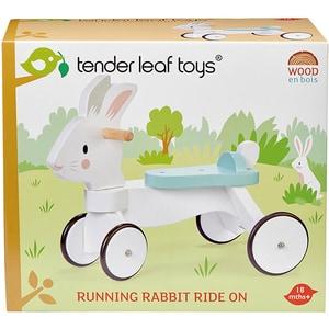 Tricicleta fara pedale TENDER LEAF TL8591, 18 luni+, alb-bleu