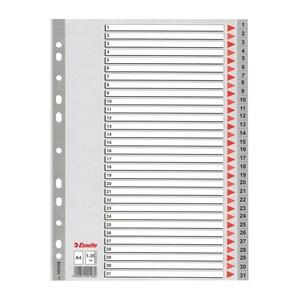 Separator ESSELTE 1-31, 225 x 297 mm, plastic, 11 perforatii; format A4, gri